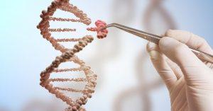 ADN Guerra Genética