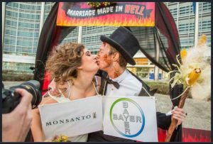 Un Matrimonio infernal: Monsanto bayer
