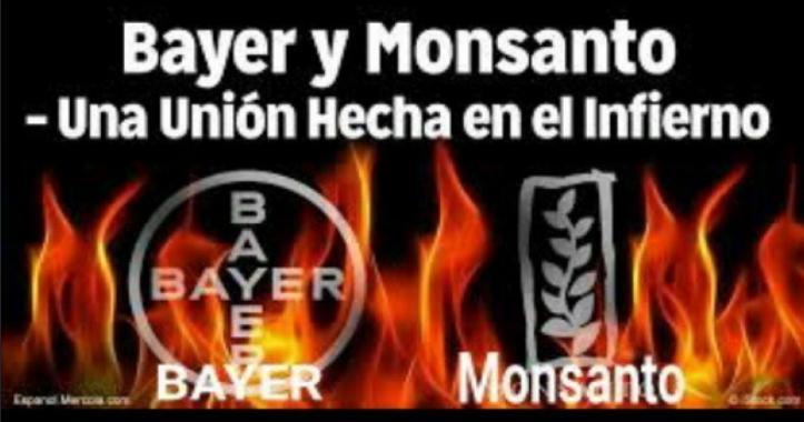 Bayer y Monsanto: una unión hecha en el Infierno