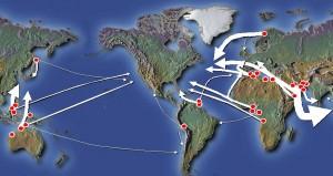 Comercio Mundial de Gas