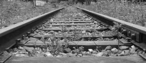 Vía férrea o ferrocarrilera
