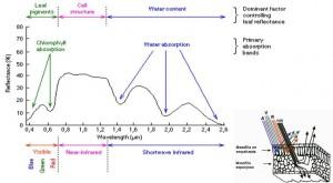 Diagrama que explica que es una firma espectral